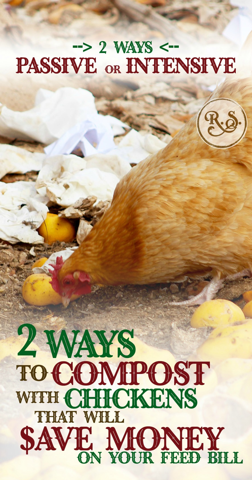 2 ways to compost with backyard chickens that will save money on