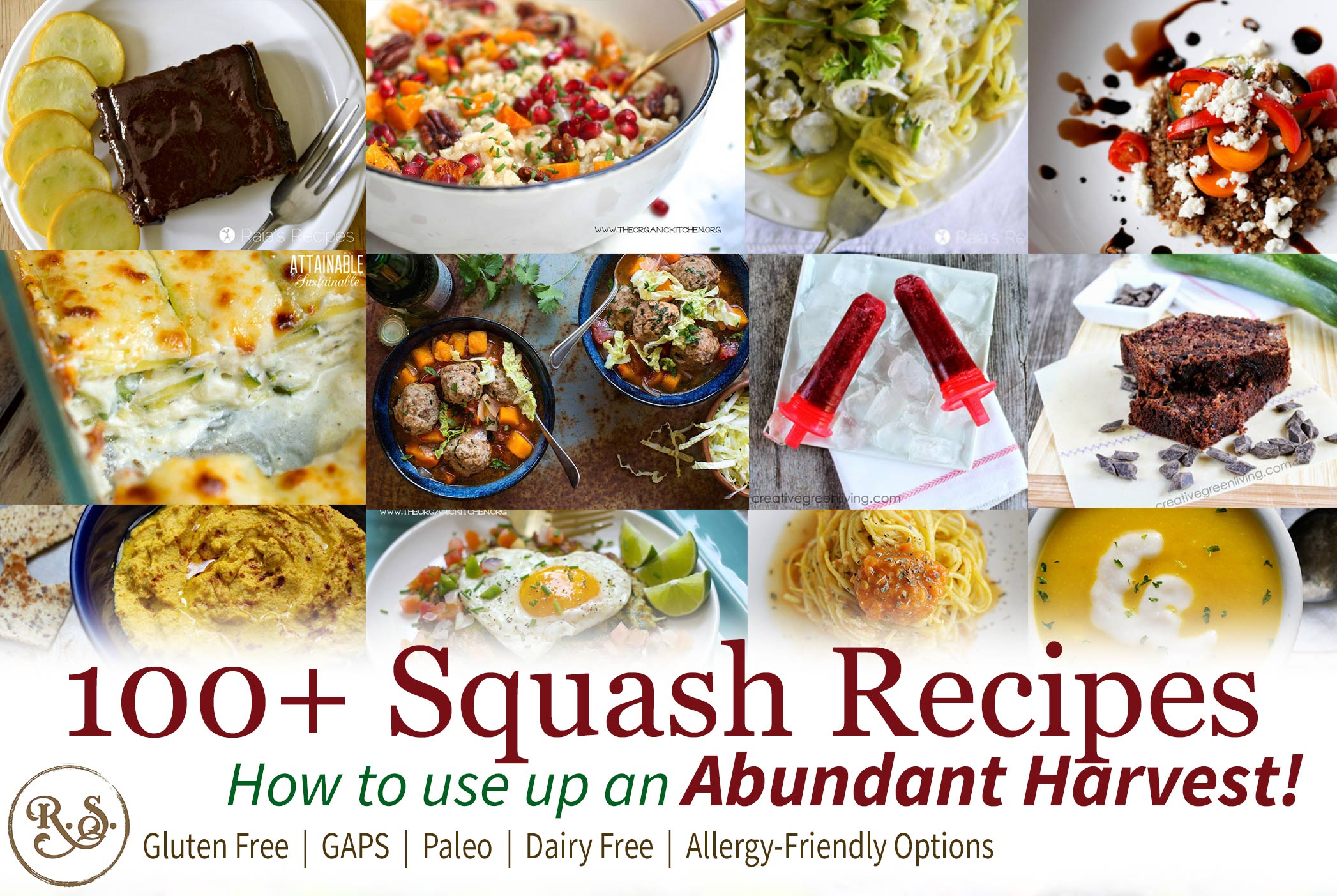 Find 100+ squash recipes to use up an abundant squash harvest from your garden. When squash is in season you can't have too many recipes. Find the right easy squash recipe for you.