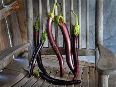Unusual garden vegetables are a great way to have produce coming from your garden with character and unique variety. #unusualvegetables #togrow #gardening