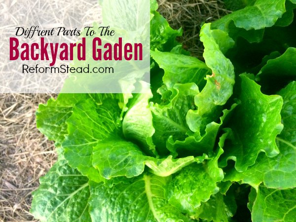 I like gardening... But would you believe it if I told you that when I first started I thought I would hate it! :) Learn about the important different parts of the backyard garden.