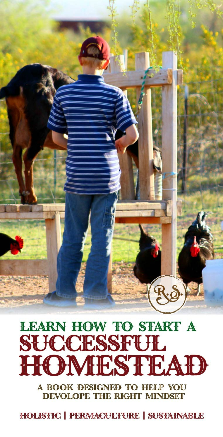 A Homesteading book for beginners and advanced alike! Grow your own sustainable, permaculture type of homestead that considers every aspect, with a plan and goal for the future. Soli Deo Gloria!