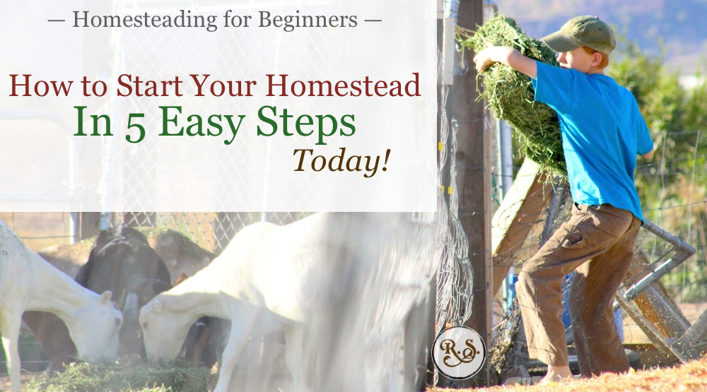 Backyard homesteading is a dream for many. In this article we will learn the 5 steps you need to start your homestead today. #homesteadingforbeginners #homesteading #howtostart