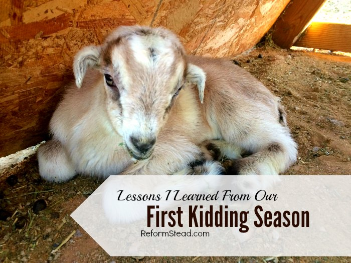 Our first goat kidding season was full of new challenges. I did lots of reading up on taking care of baby goats...and the kidding process. I was ready! But something I wasn't expecting happened.