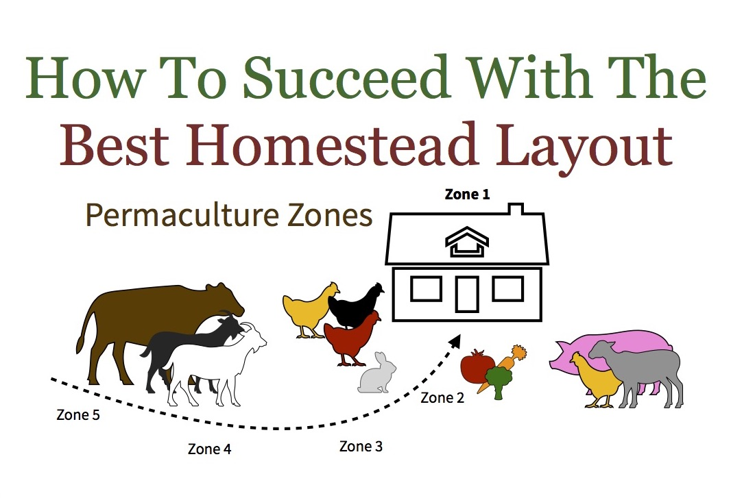 Backyard permaculture zones are key to a successful homestead layout. Understanding and using zones is critical for a sustainable lasting design.