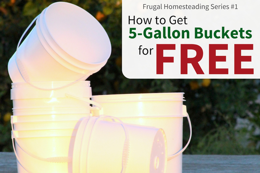 Five gallon bucket costs add up fast on a homestead. But they're easy to find free! Learn to stop spending money on them in this frugal homesteading article. #fivegallonbuckets #frugal #homesteading
